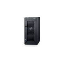 Dell PowerEdge T30 Mini Tower Server (E3-1225v5)